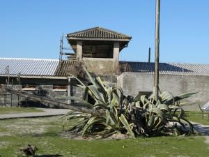 Wer Robben Island besichtigt kann sich ein Bild davon machen, was für ein Opfer Madiba für uns alle erbracht hat